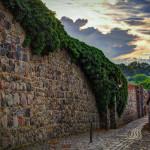 Stadtmauer Templin mit Efeu-Bewuchs am Abend