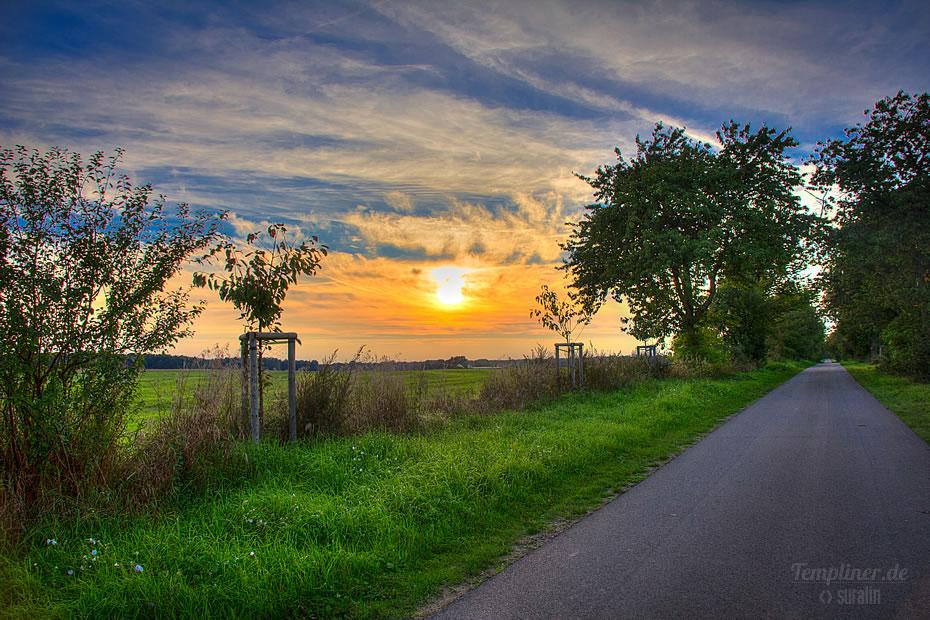 Abendsonne am Radweg Neuplachter Weg