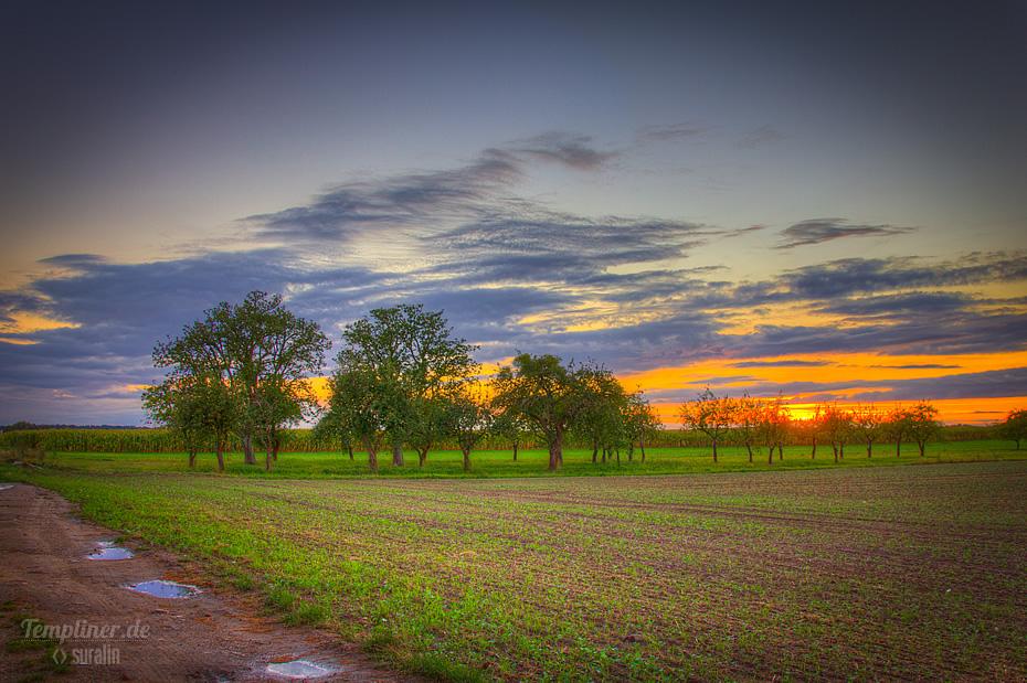 Sonnenuntergang bei Templin an der L23 Richtung Densow