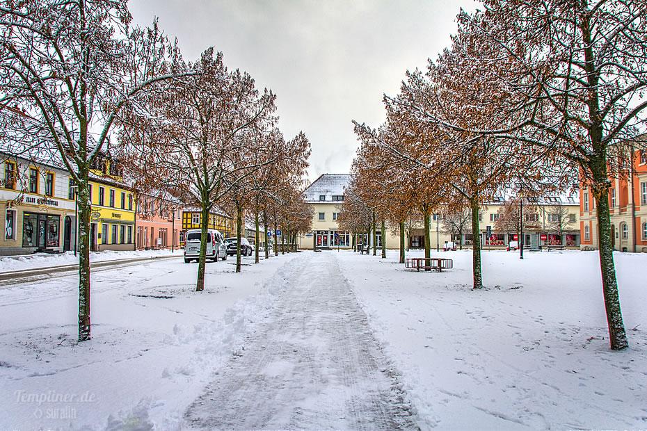 """Baum-""""Gasse"""" auf dem Templiner Marktplatz mit zarter Schneedecke"""