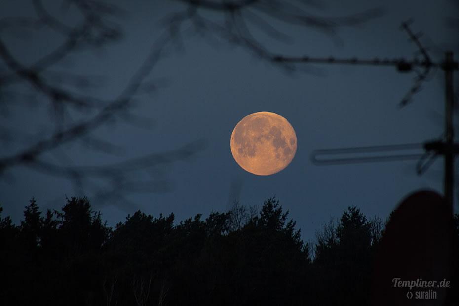 Die Ansicht des Mondes am Morgen des 1.2.2018 von Templin aus gesehen