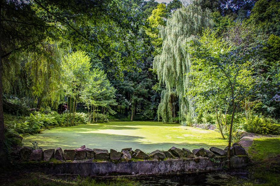 Teich im Bürgergarten Templin