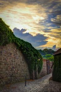 Stadtmauer Templin mit Efeu-Bewuchs